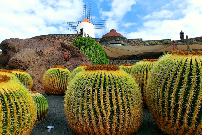 Canary Islands Cruises